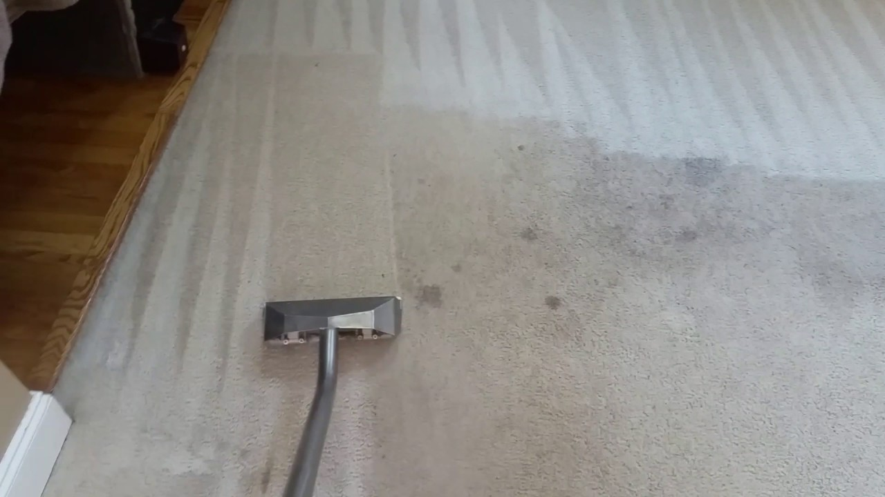 Clean the soiled area of ​​the carpet