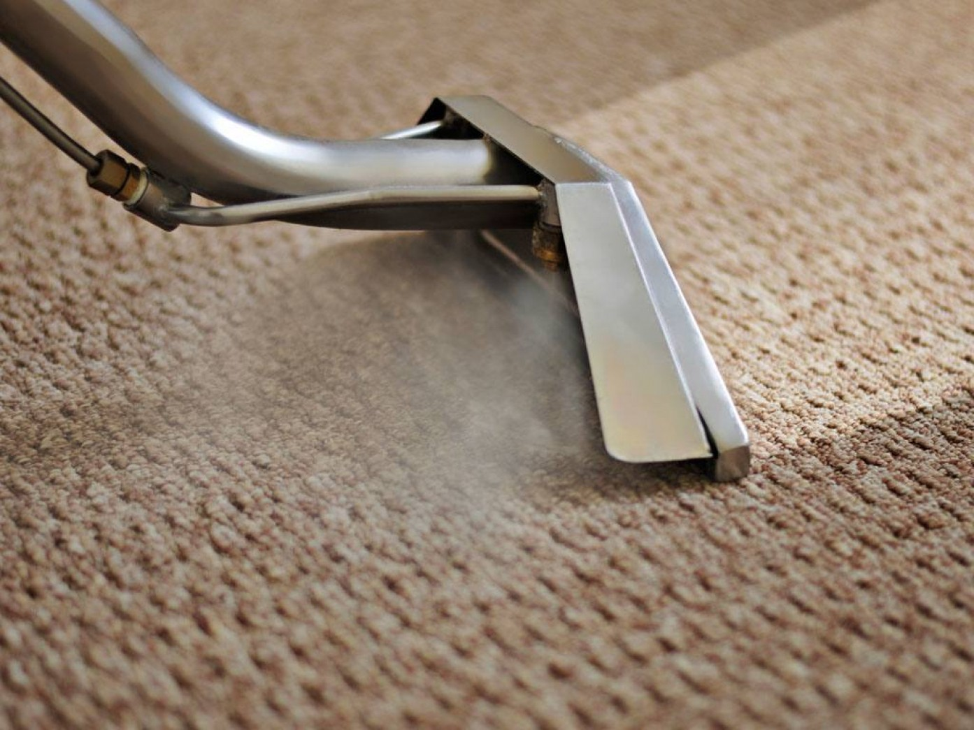 steam carpet cleaning service