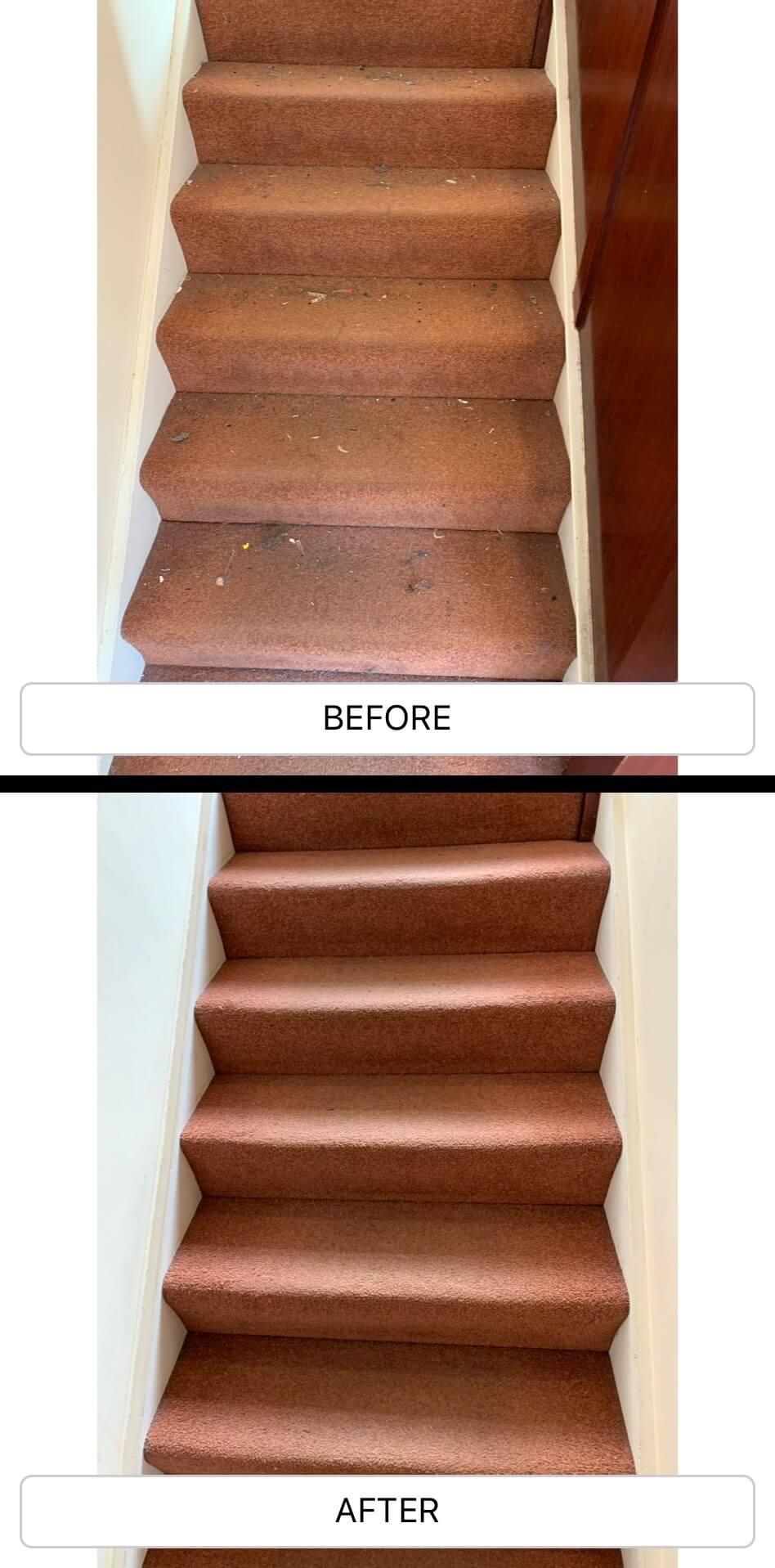 Carpet Cleaning Wimbledon SW19